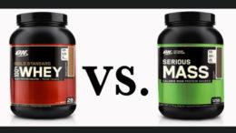 whey vs mass gainer
