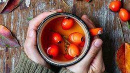 rosehip tea