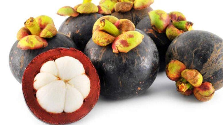 mangosteen fruit benefits